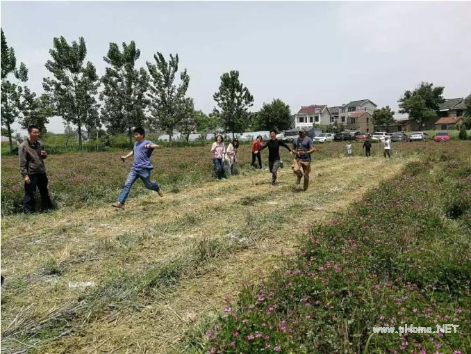 时间农场里的家庭接力赛,农场希望以这种方式与消费者建立联系。
